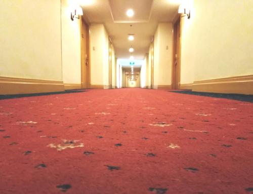 Tips for Commercial Carpet Care & Maintenance